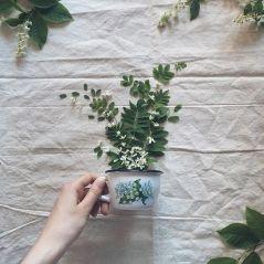 flower-floral-tea-marina-malinovaya-10-58d3bbf0b36d1__700
