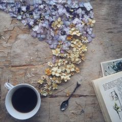 flower-floral-tea-marina-malinovaya-16-58d3bbffafe9a__700