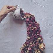 flower-floral-tea-marina-malinovaya-2-58d3bbdd90d1c__700