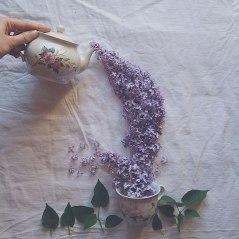 flower-floral-tea-marina-malinovaya-4-58d3bbe1b181d__700