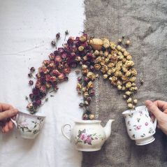 flower-floral-tea-marina-malinovaya-9-58d3bbee57871__700