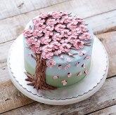 spring-colourful-buttercream-flower-cakes-13-58d8b5b127e39__700