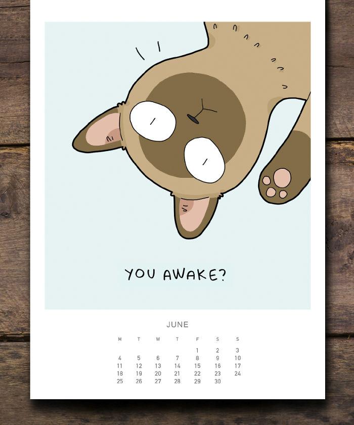 Cats-Wall-Calendar-2018-59df2d777adf4__700